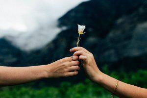 deux personnes se donnent une fleur